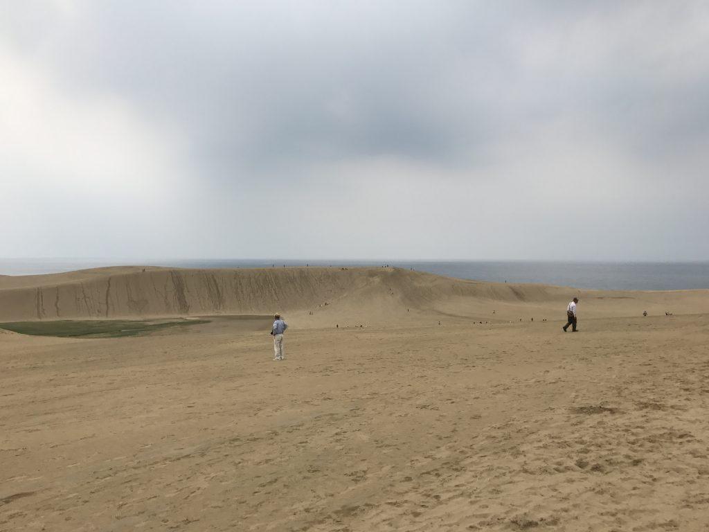 広大な砂丘