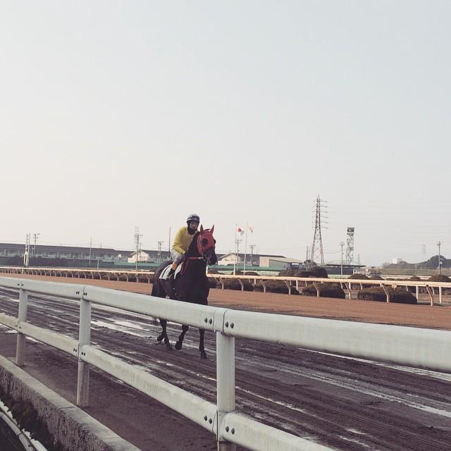 園田競馬場イメージ
