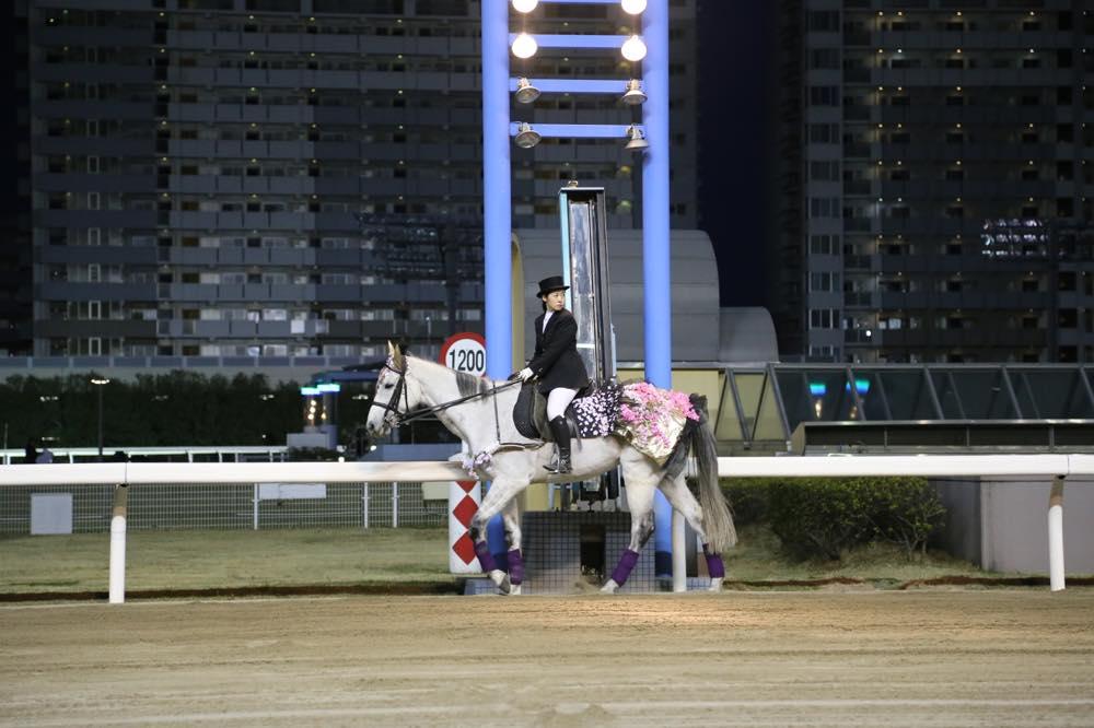 川崎誘導馬